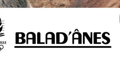 Découvrez Conflans avec Balad'Ânes